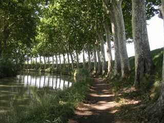 Along the Canal du Midi , Southern France